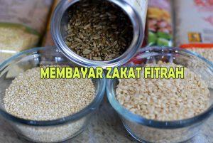 membayar zakat fitrah
